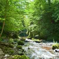 Gorges Jordanne 3