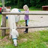 ucpa equitation 1