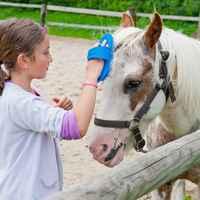 ucpa equitation 2