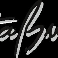 Logo Stabus