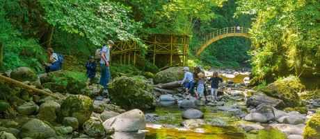 Gorges Bandeau Site